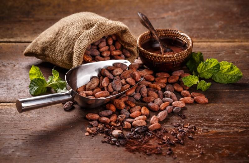 チョコレートのカカオ豆の種類について